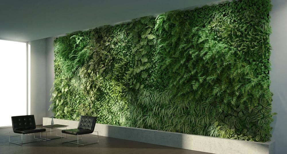 mur végétal au bureau
