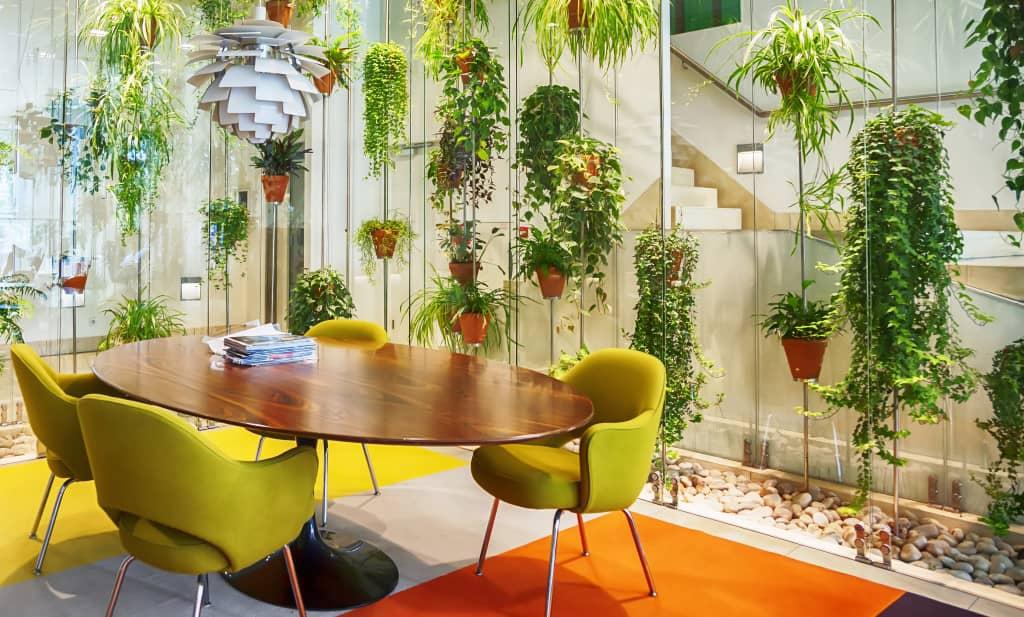 plantes vertes au bureau en entreprise
