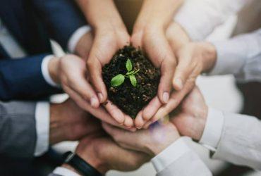 Bilan carbone d'une entreprise : comment réduire l'empreinte écologique ?